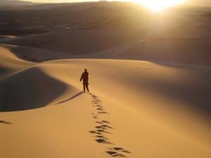 wandering-in-desert