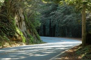 bend-in-road