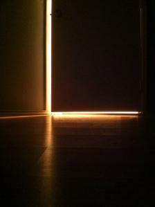 light-door