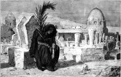 062-Widow-Mourning-q75-500x317